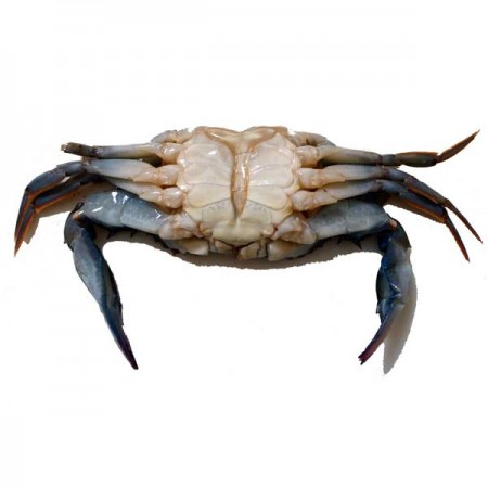 http://www.finestgourmetfood.co.uk/38-79-thickbox/18-soft-shell-crabs-frozen.jpg