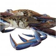 Blue Swimmer Crab Lump Meat 450g